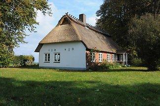 Hasenhaus