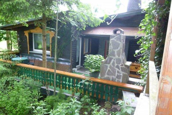 Ferienhaus  en Stützerbach -  1