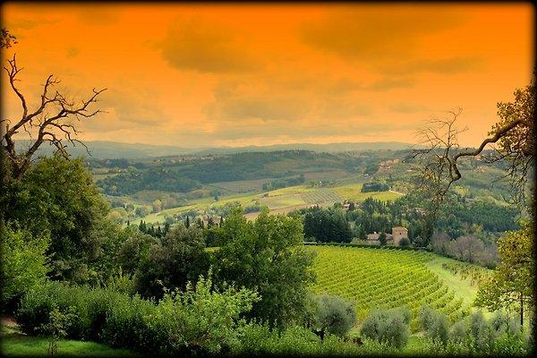 Villa La Cappella - Toscana Chianti en Montespertoli - imágen 1