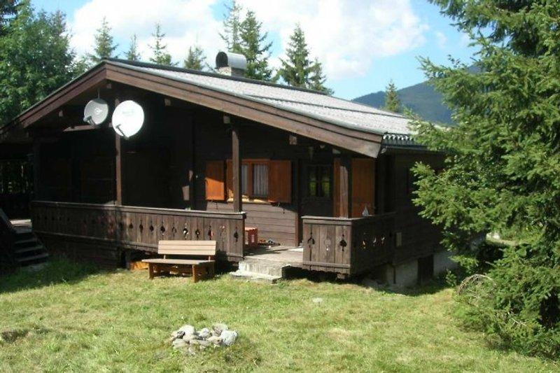 Hütte 27 (Doppelhütte) im Sommer (Gartenseite/Rückseite mit Veranda)