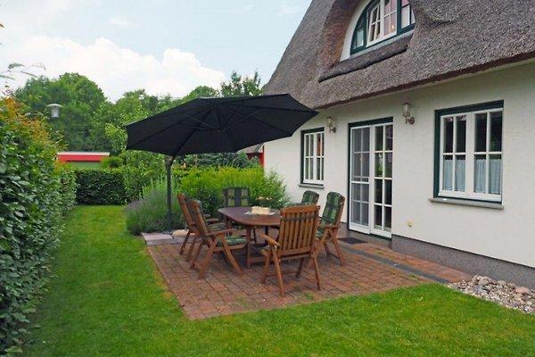 Maison de vacances à Groß Schwansee - Image 1