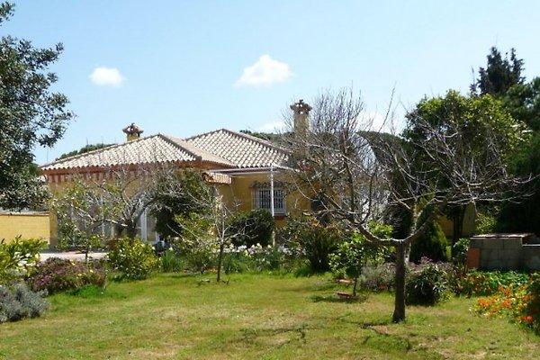 Maison de vacances Casa de la Luz à Chiclana de la Frontera - Image 1
