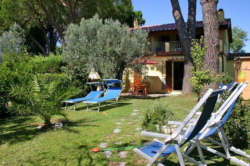 Die Liege- und Relaxwiese hinter dem Haus