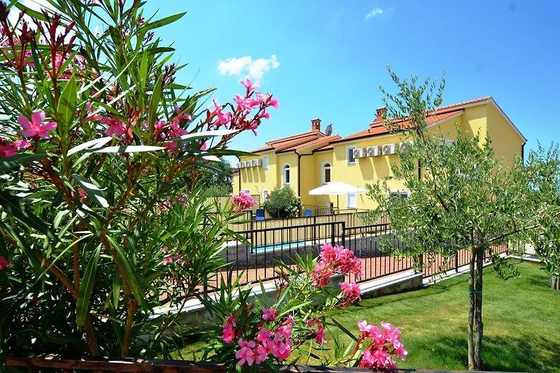 Villa Gustavo