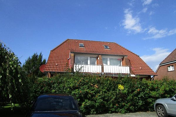 Appartement à Neßmersiel - Image 1