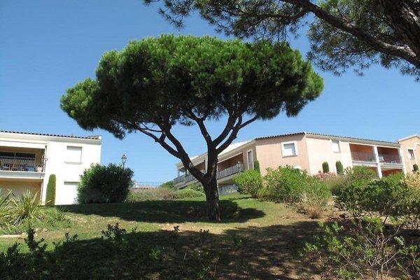 Appartement Proche Centre à Sainte Maxime - Image 1