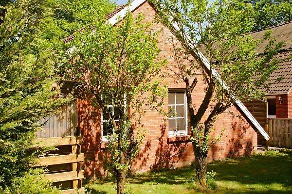 Backhaus ohne Treppen mit WLAN in Brinkum - Bild 1