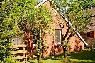 Backhaus ohne Treppen mit WLAN