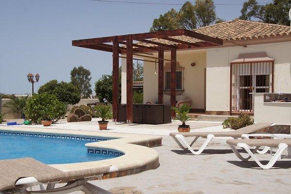 Villa Tres Palmeras en Chiclana de la Frontera - imágen 1
