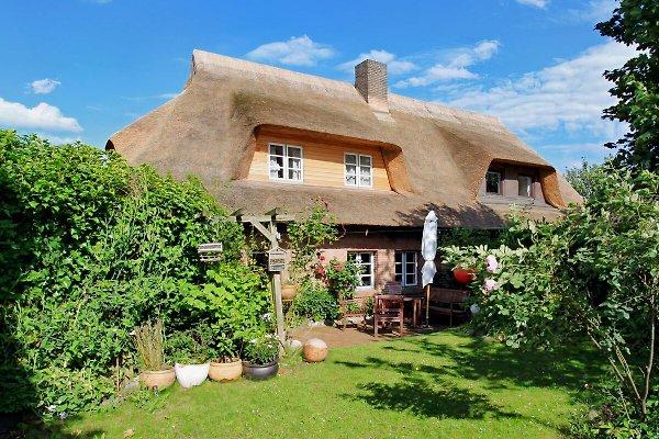 Reethaus mit Terrasse und Garten