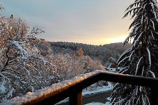 Ferienwohnung mit Waldblick