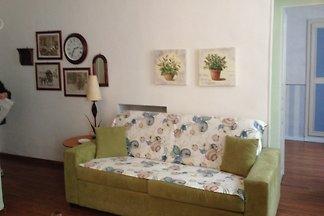 Appartement  provençal plein centre