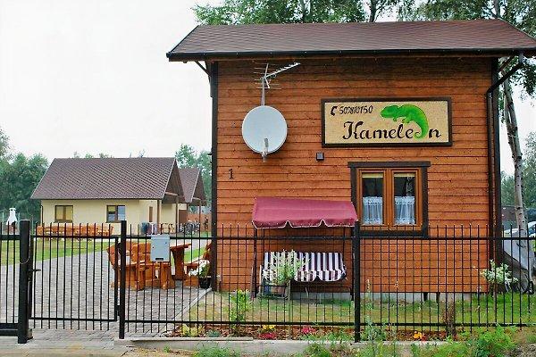 camaleón Cottages en Dzwirzyno - imágen 1