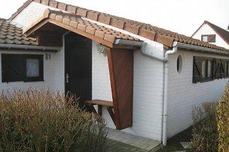 Dünenhaus Zeewind II