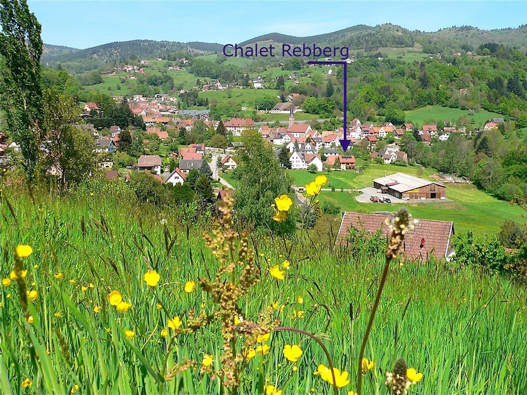 Chalet Le Rebberg Holiday Home In Soultzeren