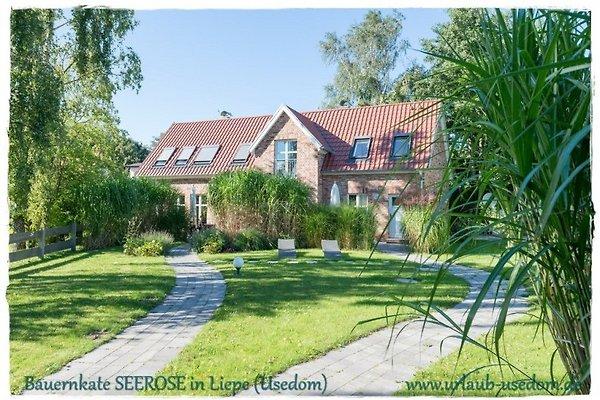 Maison de vacances à Liepe - Image 1