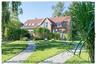 Holiday home relaxing holiday Liepe