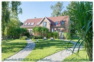 Kuća za odmor Dopust za oporavak Liepe