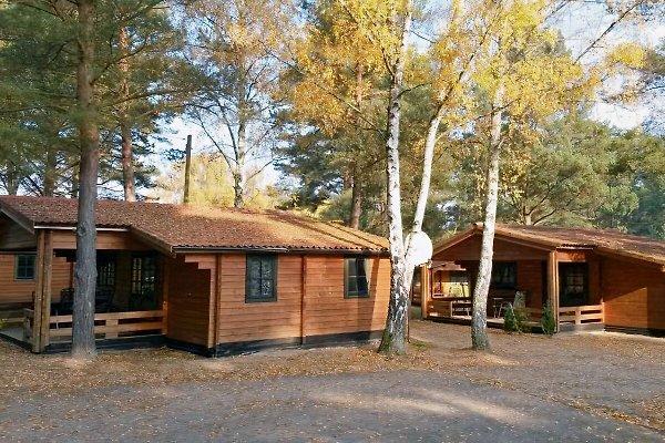 Haus Typ B en Himmelpfort - imágen 1