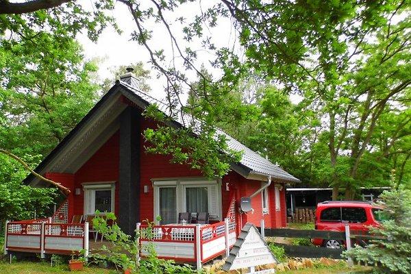 Maison de vacances à Schönebeck - Image 1