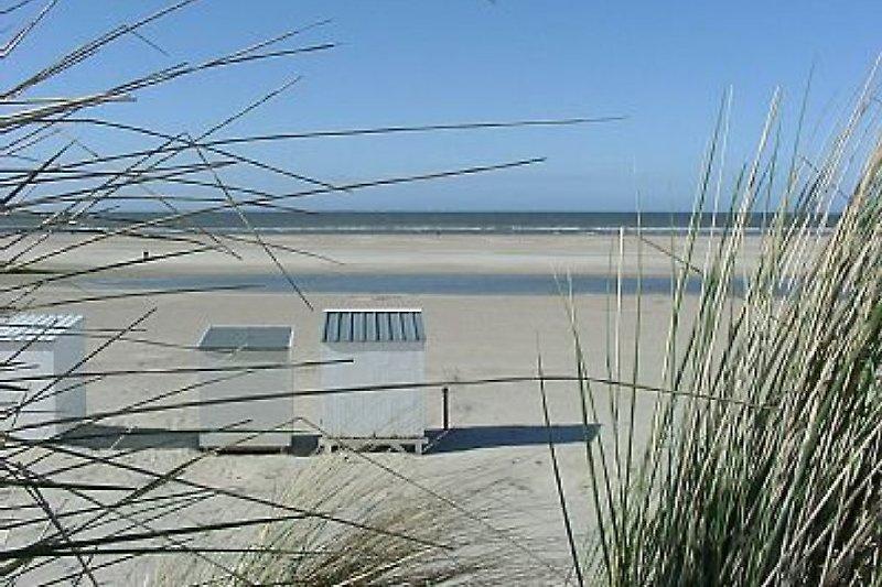 Strand am 500 meter
