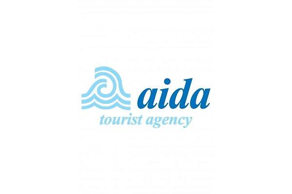 """<span style=""""font-size:smaller;"""">Firma Aida Tours</span><br> Herr A. Saskin"""