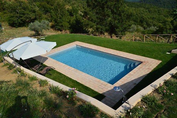 Der Schwimmingpool