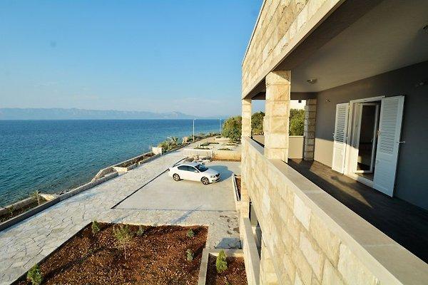 DUBAS APARTMENTS Apartment Camellia en Trpanj - imágen 1