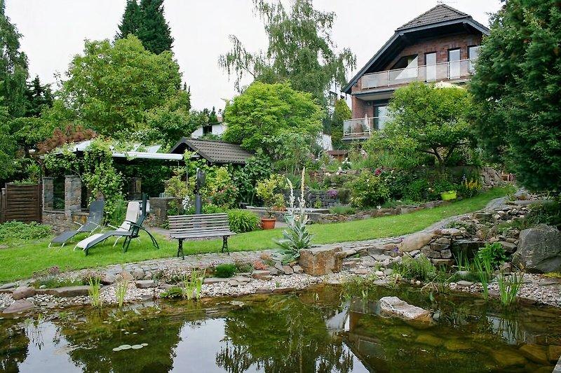 Blick vom Teich zur Pergola
