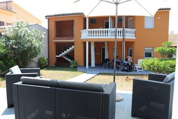 Apartments Marin