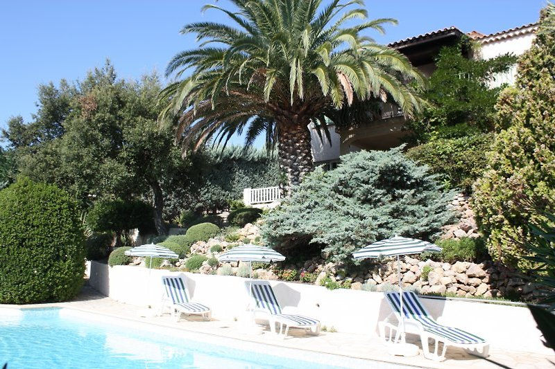Pool Bereich -