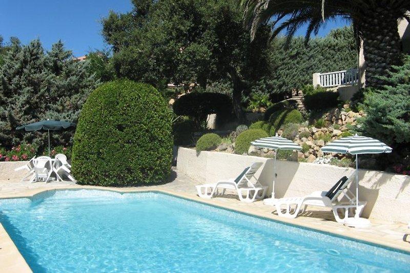 Pool x 11 m x 4,5 m - Tief 0,90 m x 2,20 m