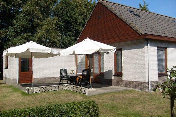 Luxe vakantiebungalow roggebos 2 vakantiehuis in burgh haamstede huren - Terras beschut ...