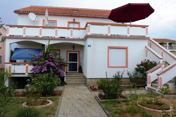 Maison Ivanka à Vrsi - Image 1