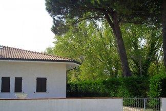 Villa Picchio 7