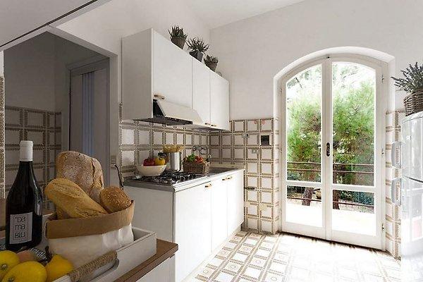 ferienanlage dama blu ia nudb ferienwohnung in numana mieten. Black Bedroom Furniture Sets. Home Design Ideas