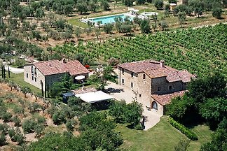 Weingut Fattoria di Montecchio,  T