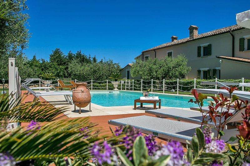 Villa Alis - Private villa with pool 4 km from the Adriatic coast