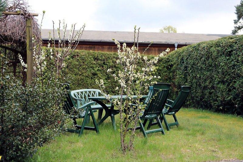 Gartenbereich vor Hus Mia
