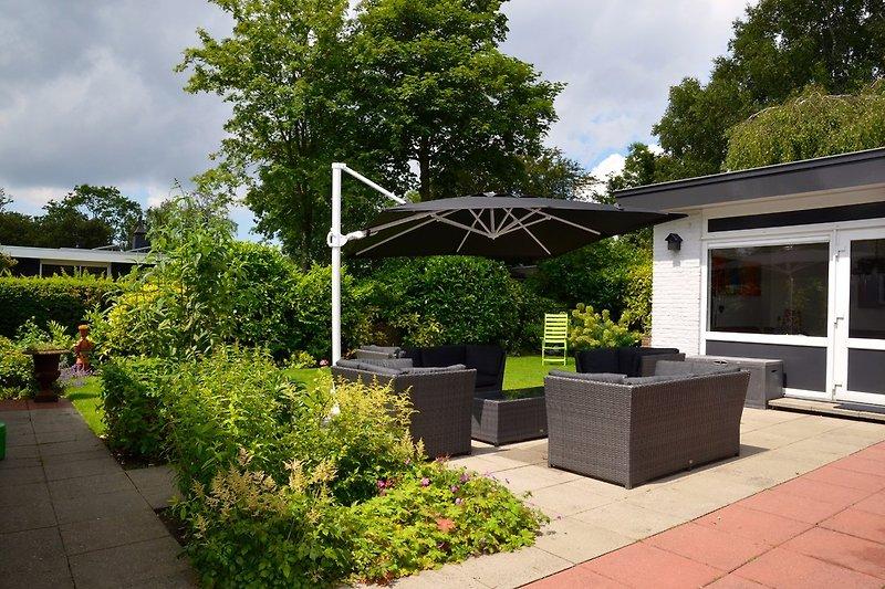 Sonniger Garten und Terrasse