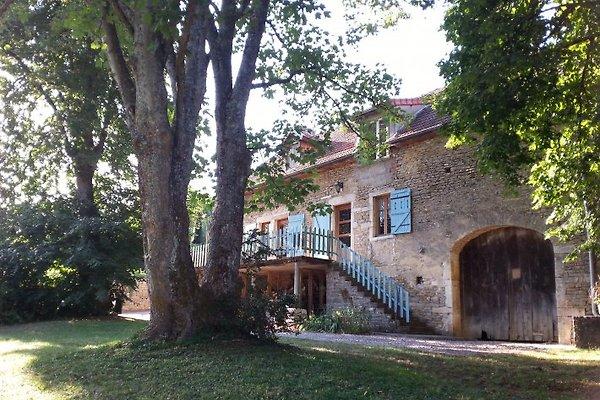 Tilleuls près de Beaune, 3 ***  à Baubigny - Image 1