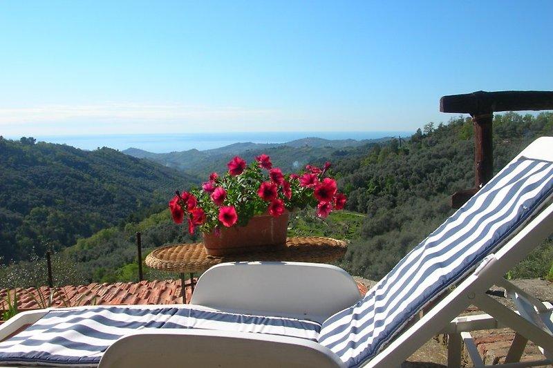 Der Garten mit Bestuhlung und fantastischem Blick uber die Olivenhaine aufs Meer