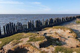 Paesens Moddergat am Wattenmeer