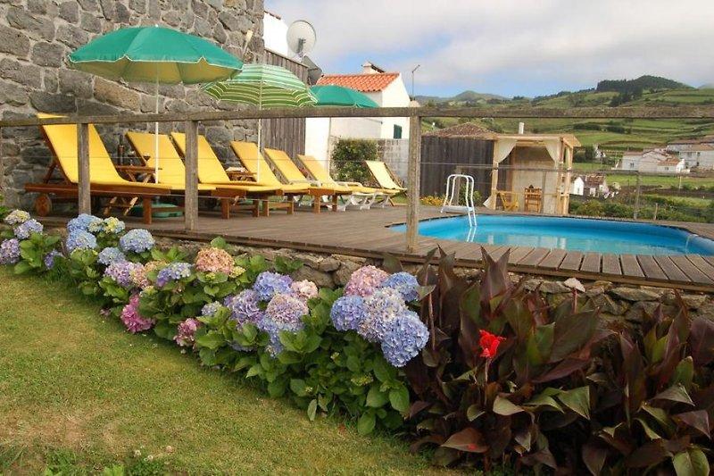Blick zum Haus und Pool