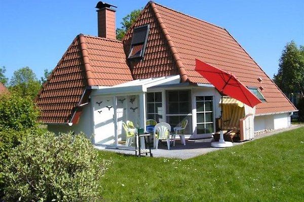 Ferienhaus klammer mit Wintergarten