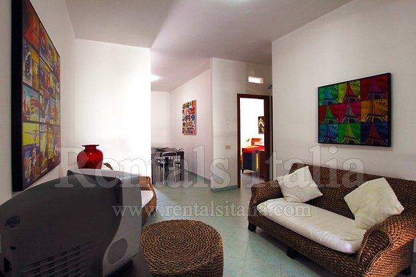 wohnung palme sie machen den preis ferienwohnung in. Black Bedroom Furniture Sets. Home Design Ideas