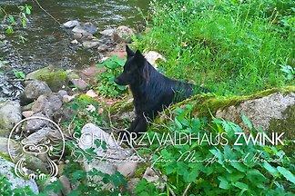 Schwarzwaldhaus Zwink Wildbach