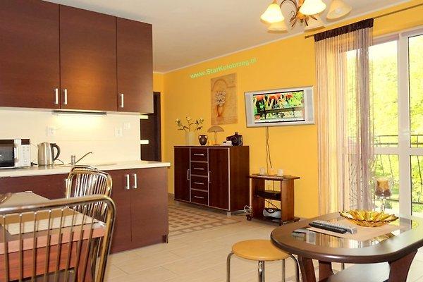 Appartement. POLO avec 2 chambres. à Kolberg - Image 1