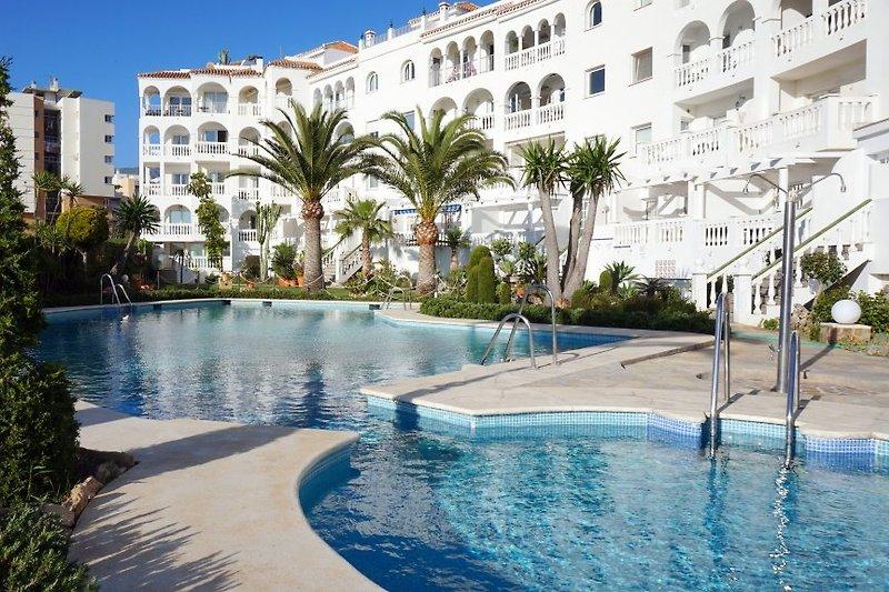 Apartments Stella Maris. Garten, einen großen Swimmingpool, offen praktisch das ganze Jahr über.