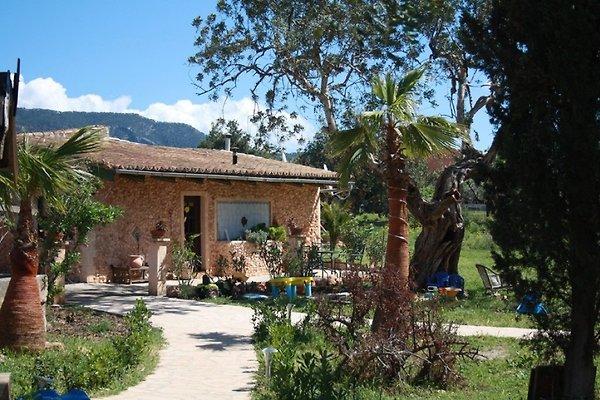 Finca Mallorca à Bunyola - Image 1